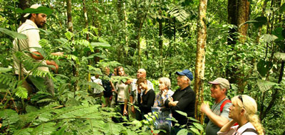 advantages and disadvantages of jungle trekking Advantages/pros of barefoot hiking disadvantages/cons of barefoot hiking   walking barefoot across freshwater streams and cool muddy forest pathways.